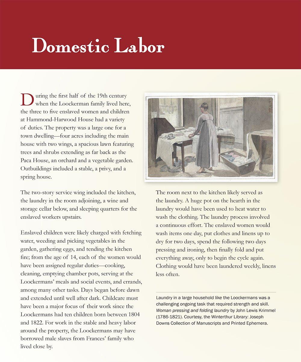 Slavery: Domestic Labor